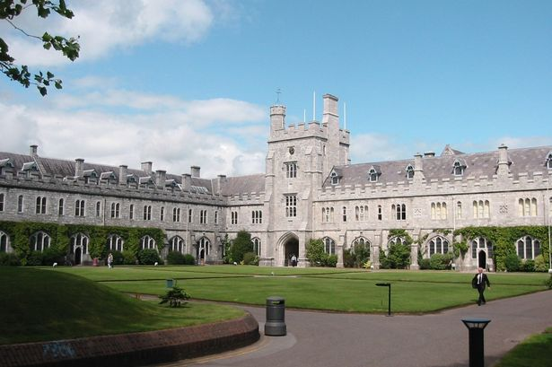 "University College Cork wants to recruit 100 members of the public ""from all walks of life"" to give their vision for the future of the Internet."